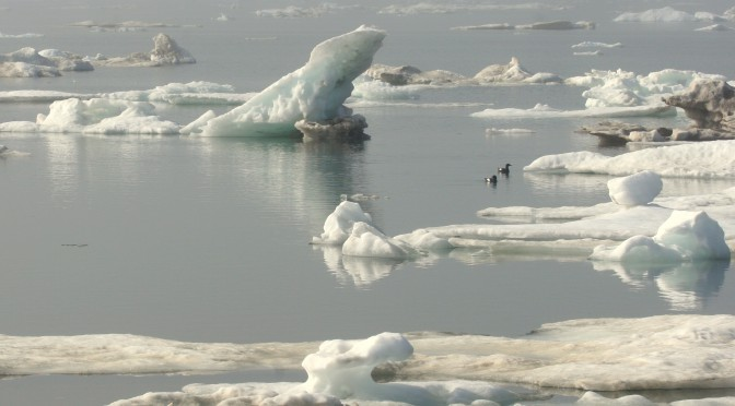 Sea Ice North of Cooper Island
